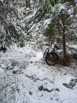 Plastraketen i skogen mellan Sätra och Stigslund